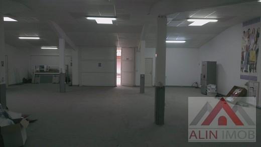 Hala.Parc Industrial Vetis 164